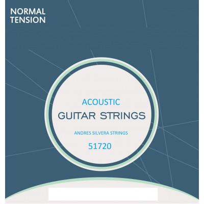 Corde chitarra Acustica Andres Silvera