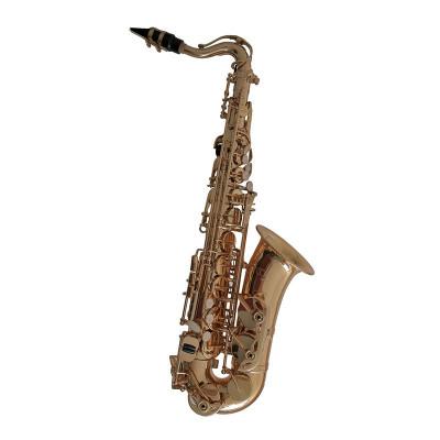 Sassofono alto in Mib per bambini AS655, C.G. Conn
