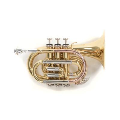 Tromba Pocket in Sib Roy Benson PT-302