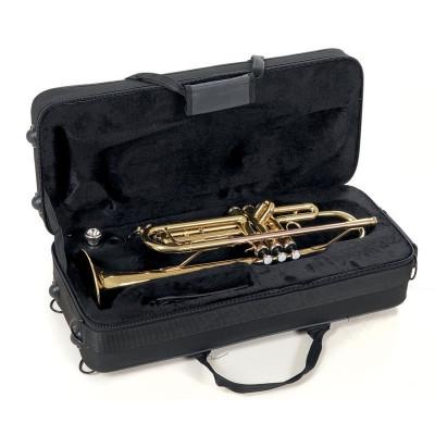 Tromba in SIb Roy Benson TR-101