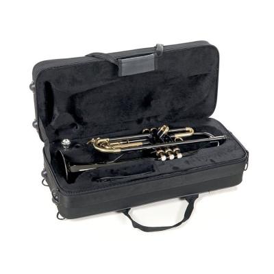 Tromba in SIb Roy Benson TR-101K