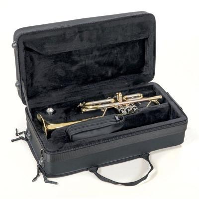 Tromba in Do Roy Benson TR-402C