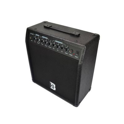 Bryce Amplificatore per Chitarra 30 Watt