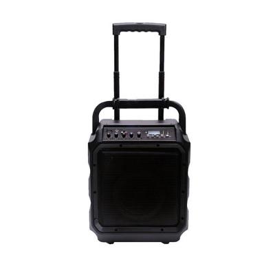 PPA MP8X Cassa amplificata a batteria 100W con lettore USB, SD e Bluetooth